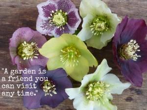 garden_quotes5