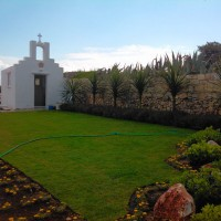 Landscape after - Dracenas and seaside lawn